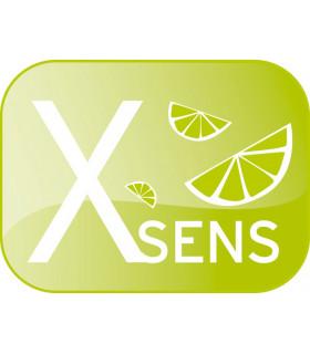 Recharge parfum X-Sens Citron