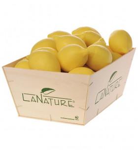 Savon forme Citron 125g - La Nature